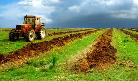 Politica agricola comuna in perspectiva anului 2020