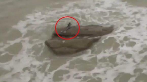 Sirenele exista? Vezi ce au filmat doi turisti in mijlocul marii! VIDEO