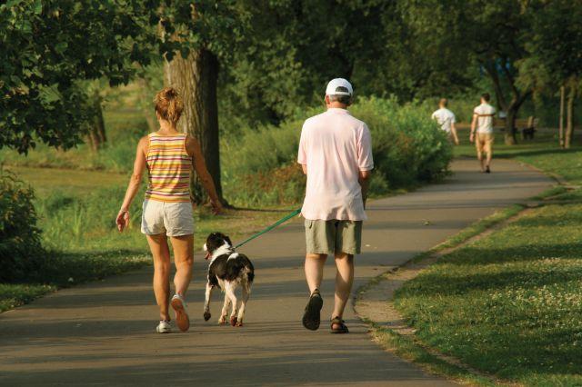 Top zece motive pentru care ar trebui sa te plimbi mai des