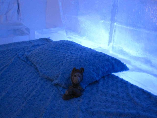 andy ice bed
