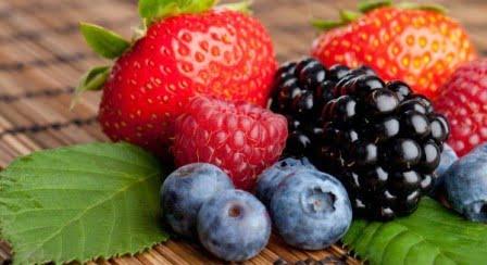 fructe-de-padure_613192275