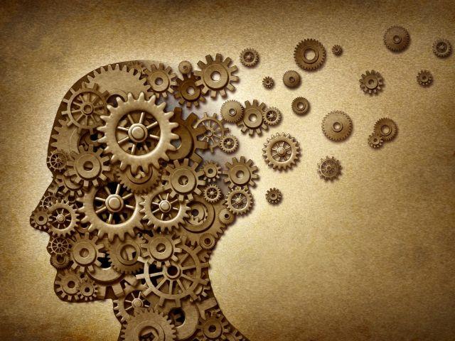 shutterstock_psychology-brain-wheels-1280x960