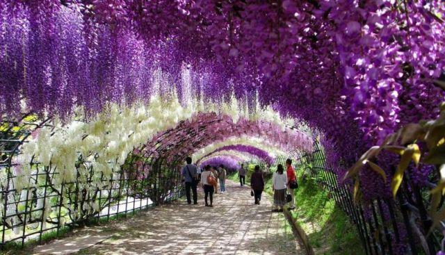 Top zece cele mai frumoase locuri din lume!