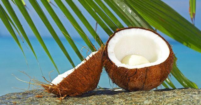 ZECE lucruri interesante despre nuca de cocos