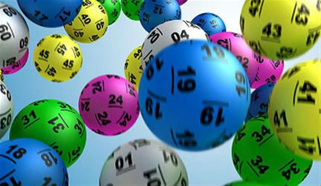 seals-lottery16172-238056_1600x900