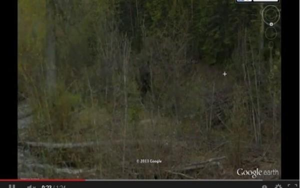 Aparitie INFRICOSATOARE intr-o padure din Canada surprinsa de pe Google Earth! VIDEO