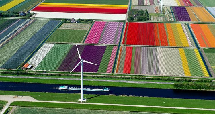 15 FOTOGRAFII incredibil de colorate, din intreaga lume!