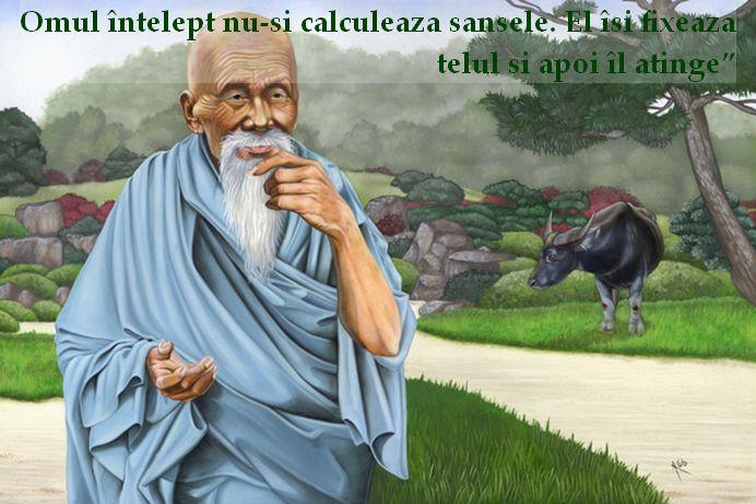 """""""Omul intelept nu-si calculeaza sansele. El isi fixeaza telul si apoi il atinge"""" – Lao Tse"""