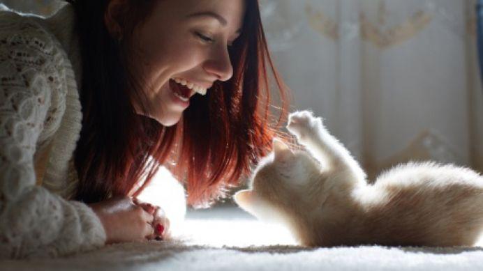 Simplu si practic: cum sa scapi de parul de pisica de pe covor!