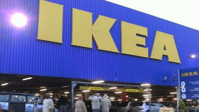 Latura INTUNECATA a IKEA! Tocmai a cumparat ZECI DE MII DE HECTARE DE PADURE in Romania, pe care le va transforma in mobila!