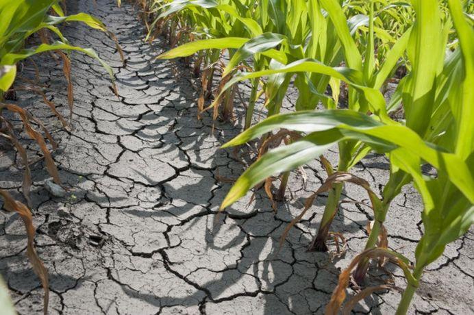 Meteorologii anunta TREI LUNI de seceta! In jumatate din Romania va fi ca-n DESERT!