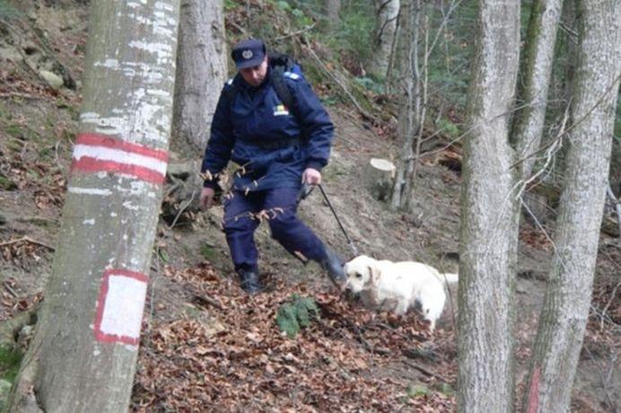 Jandarmii care cautau deltaplanul disparut in munti au facut o DESCOPERIRE SOCANTA!