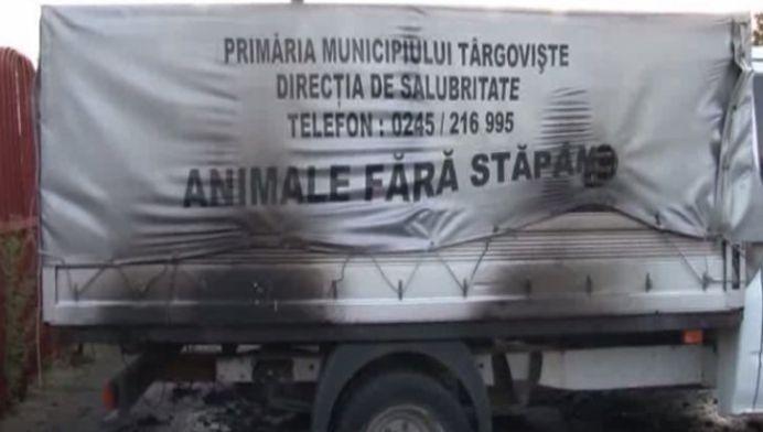 VIDEO – Mai multi oameni au dat FOC masinii UCIGASILOR de caini din Targoviste!
