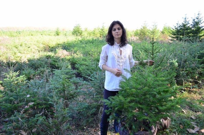 Ea ar trebui numita PRIMA DOAMNA a Romaniei! Femeia care va planta un milion de copaci INTR-O ZI!