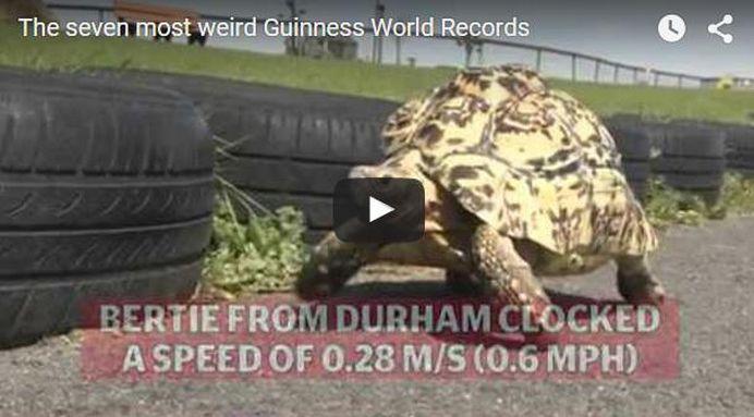 VIDEO – Cele mai ciudate recorduri mondiale din acest an!