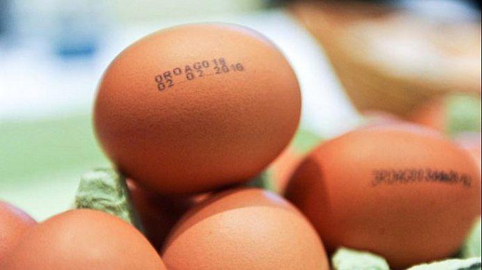 Foarte putini romani cunosc asta! Ce semnficatie au cifrele de pe ouale din comert!