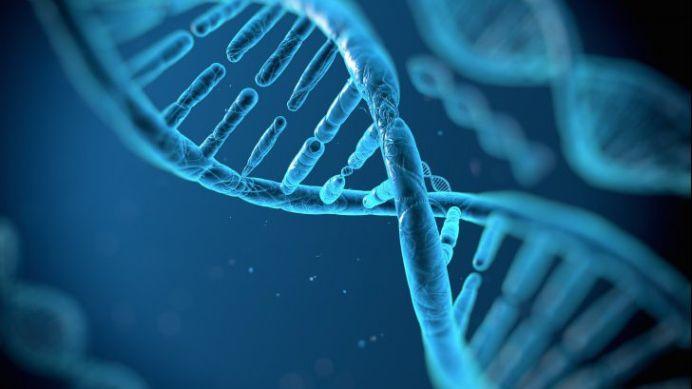 Oamenii de stiinta SUNT SOCATI! Genele umane contin ADN non-uman! De unde vine?