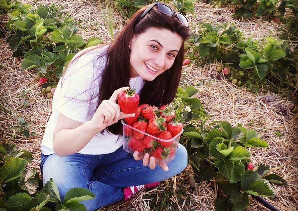 """Singurul loc din Romania unde se cultiva CAPSUNI GIGANT, 100 % ecologice! Localnicii le spun """"merele-căpsun""""!"""