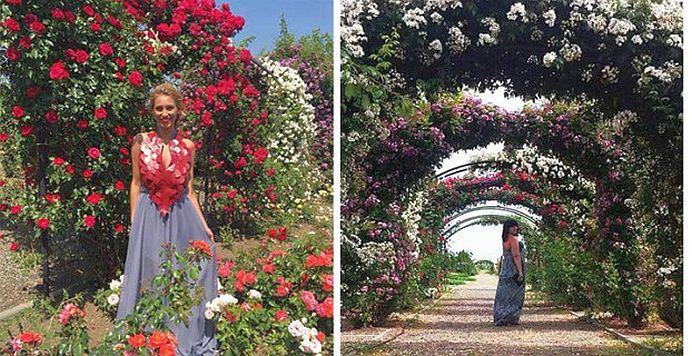 E INCREDIBIL de frumos si se afla in Romania! Rozariul Eutopia Gardens adaposteste peste 2000 de soiuri de trandafir!