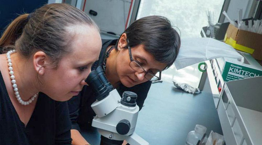 Inventia unei cercetatoare din Romania va schimba viitorul omenirii! Barak Obama a felicitat-o personal!