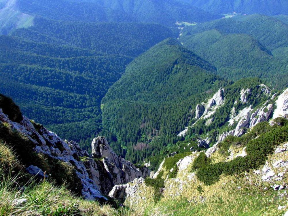 Ai auzit de pestera misterioasa din muntii Piatra Craiului despre care se spune ca ascunde o poarta spre alta lume?! Un DAC IMPIETRIT se afla aici!