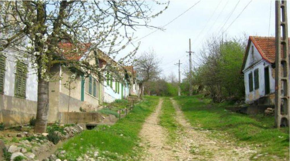 Sat SUPERB din Romania SALVAT de la disparitie de o mana de artisti!