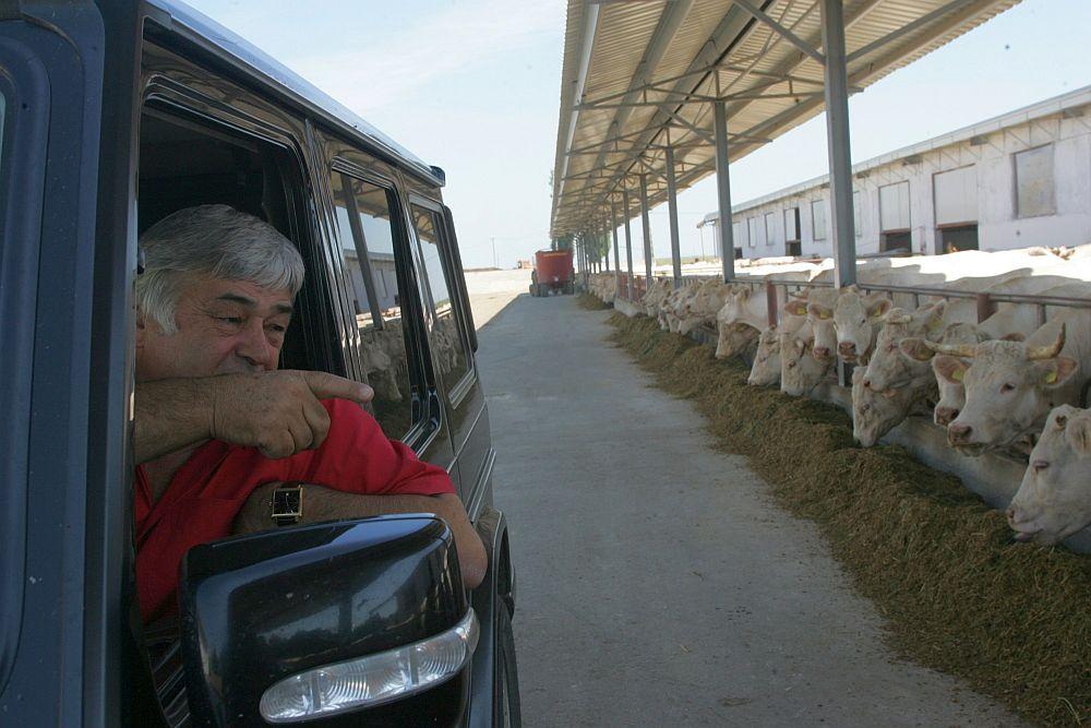 Unde puteam ajunge!? Singurul CAP din Romania care a scapat de DISTRUGERE isi plateste tractoristii cu 2000 de euro salariu si face PROFIT an de an!