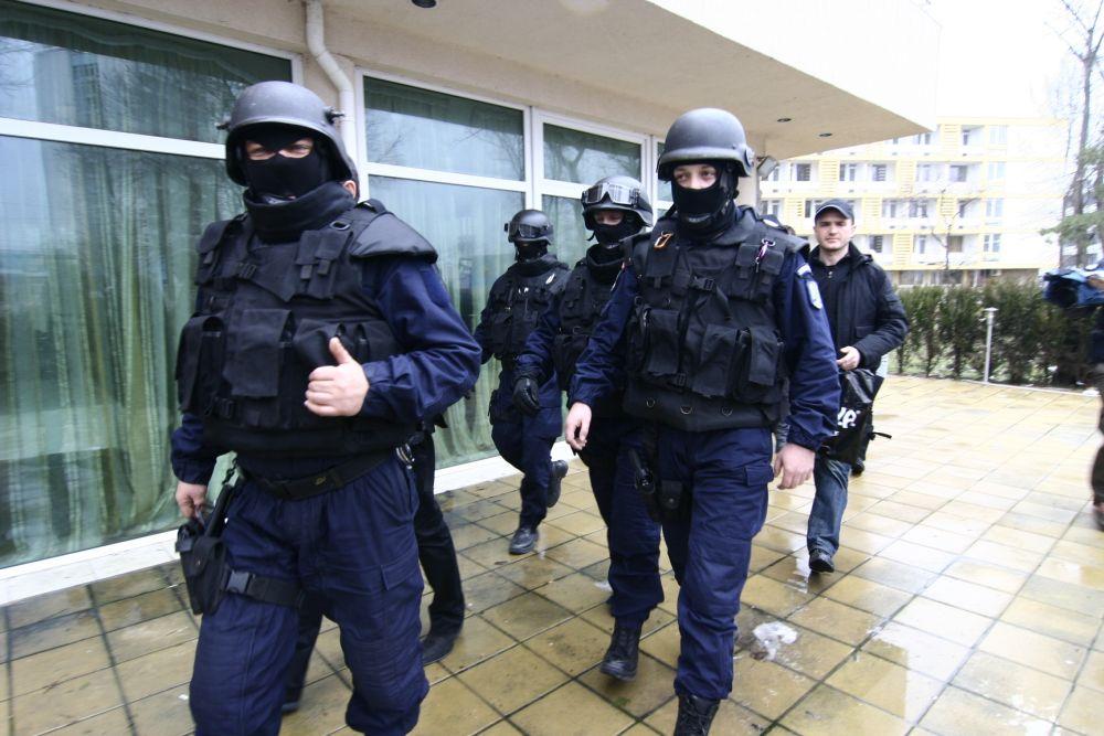 Lovitura de proportii pentru mafia drogurilor din Romania!
