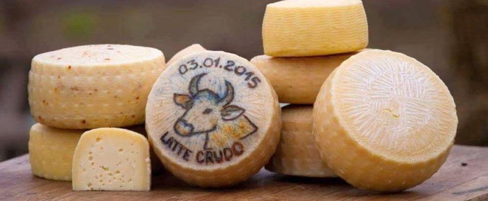 Exemplu pentru toata Romania! Un tanar din Alba produce CASCAVAL DE CASA 100% natural si NU FACE FATA cererii!