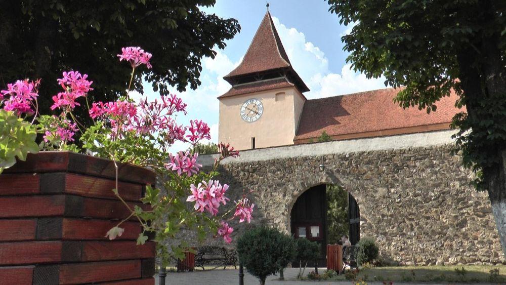Singurul oras din Romania unde esti OBLIGAT sa plantezi copaci daca vrei sa-ti construiesti o casa!