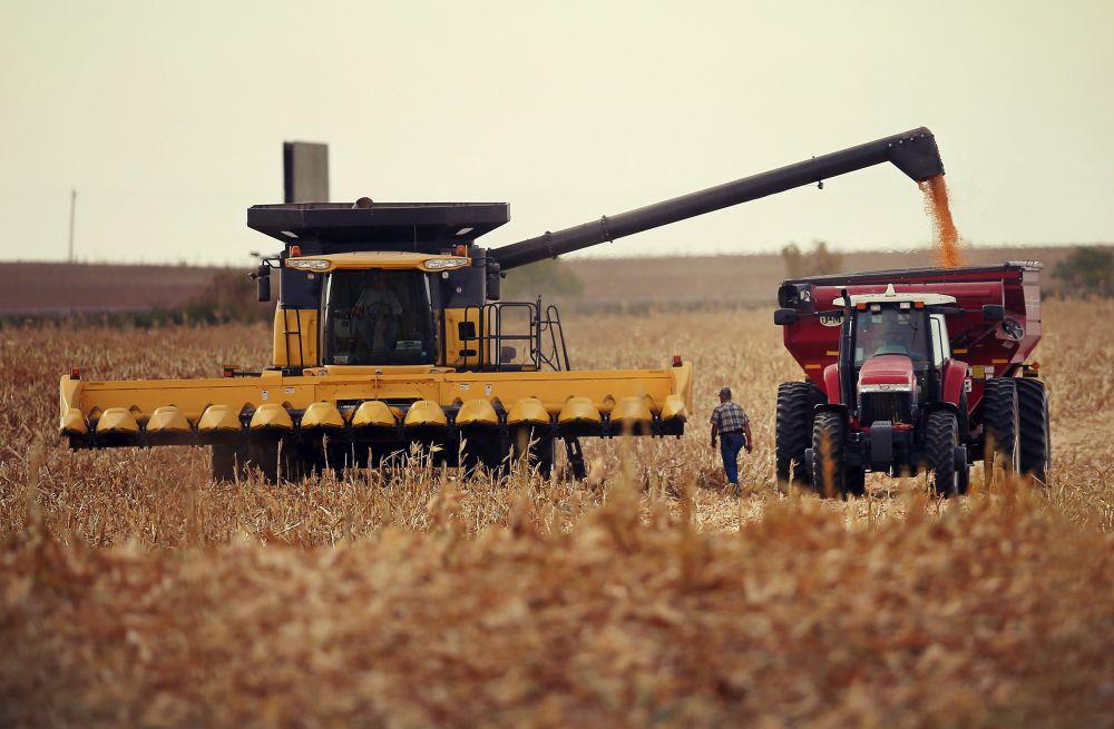 Productie record in agricultura: Niciodata in Romania nu s-au vazut asemenea recolte!