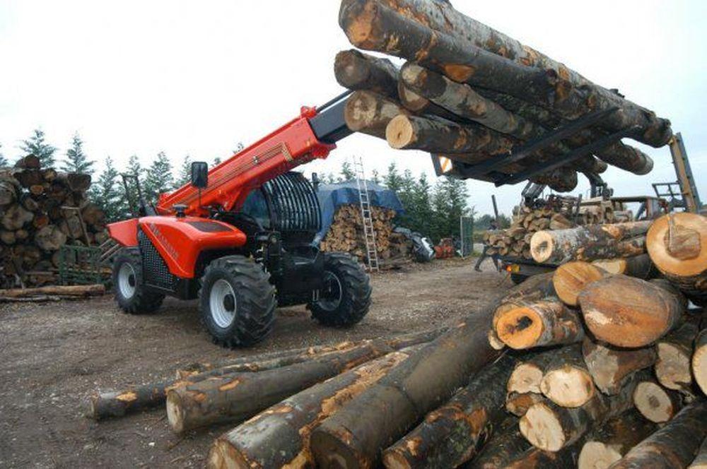 Niciun copac taiat ilegal: 33 de abateri in paduri, raportate imediat autoritatilor!